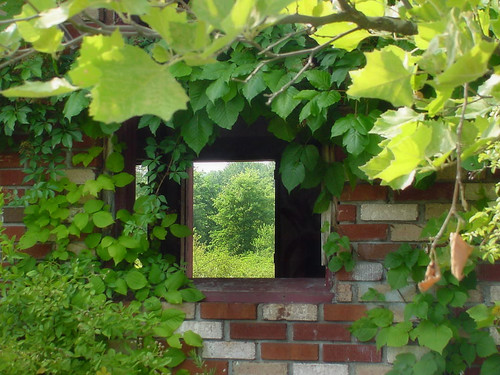 Windows In My Heart by HeatherShade