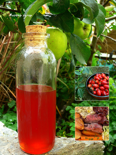 Rosehip syrup flickr photo sharing - Rosehip syrup health benefits ...