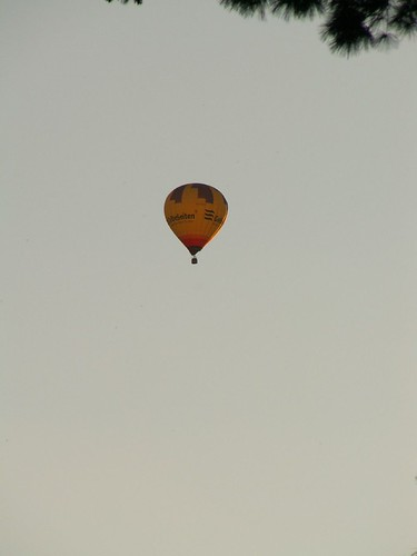 ein Träumer mit Heissluftballon in Dresden zerplatzte vor Schmerz wenn nicht den Nektar nippen, nein, schlürft, ihr gierigen Lippen, den Becher leer noch nicht, senket der Tag sein Licht