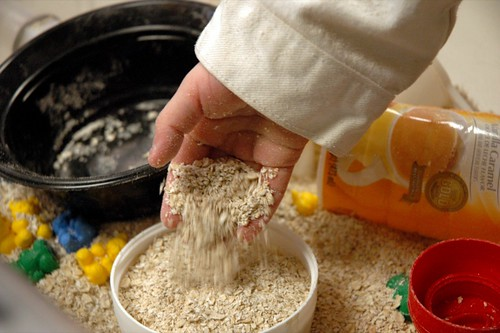 Seeds of Faith Preschool has Openings