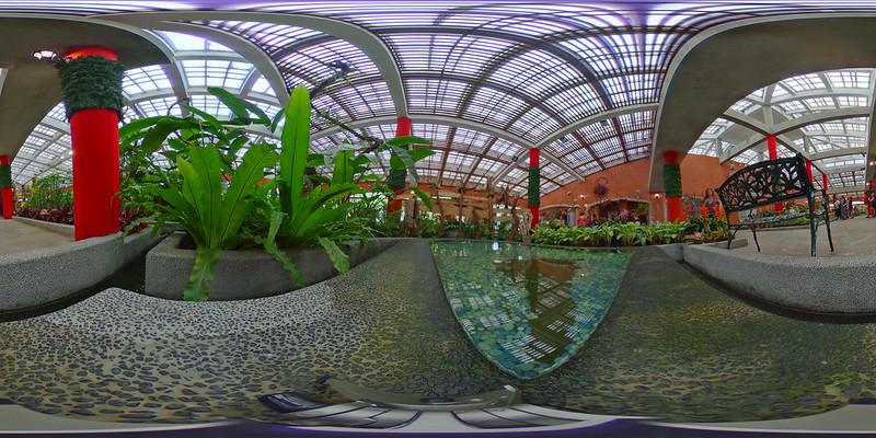 園藝展覽館後池