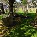 Irvine Old Parish Churchyard (295)