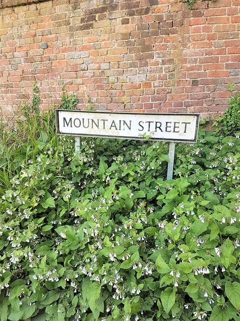 Mountain_Street