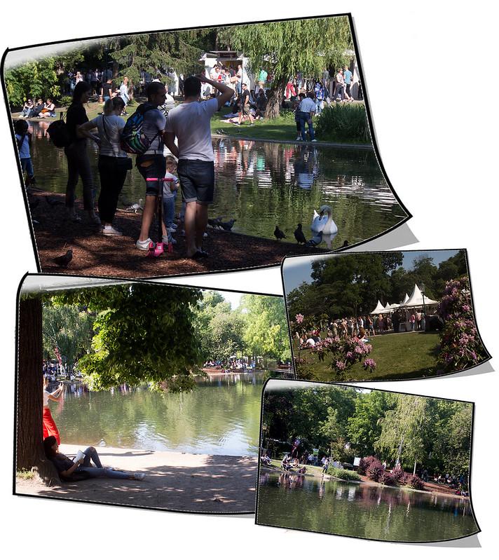 Stads parken i Wien