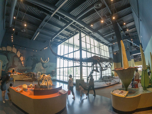Telus World of Science Museum-036