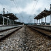 The right track by Robin Kelderman