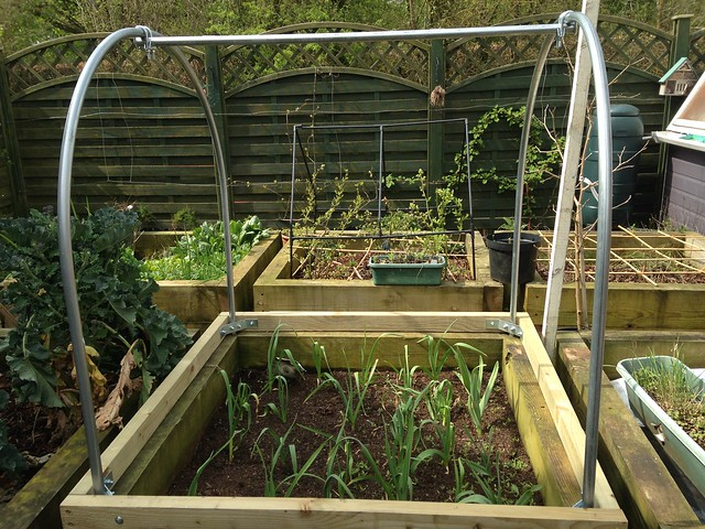 Mini polytunnel frame over a raised bed