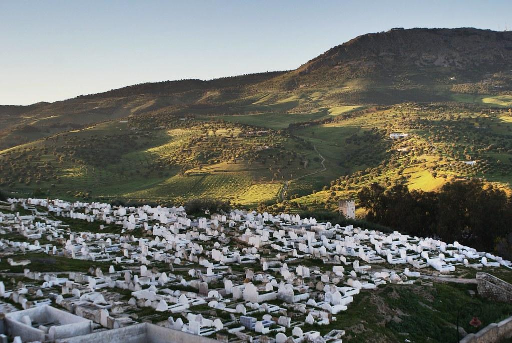 Cimetière au nord de la médina de Fès avec la colline Djbel Tghat en surplomb.