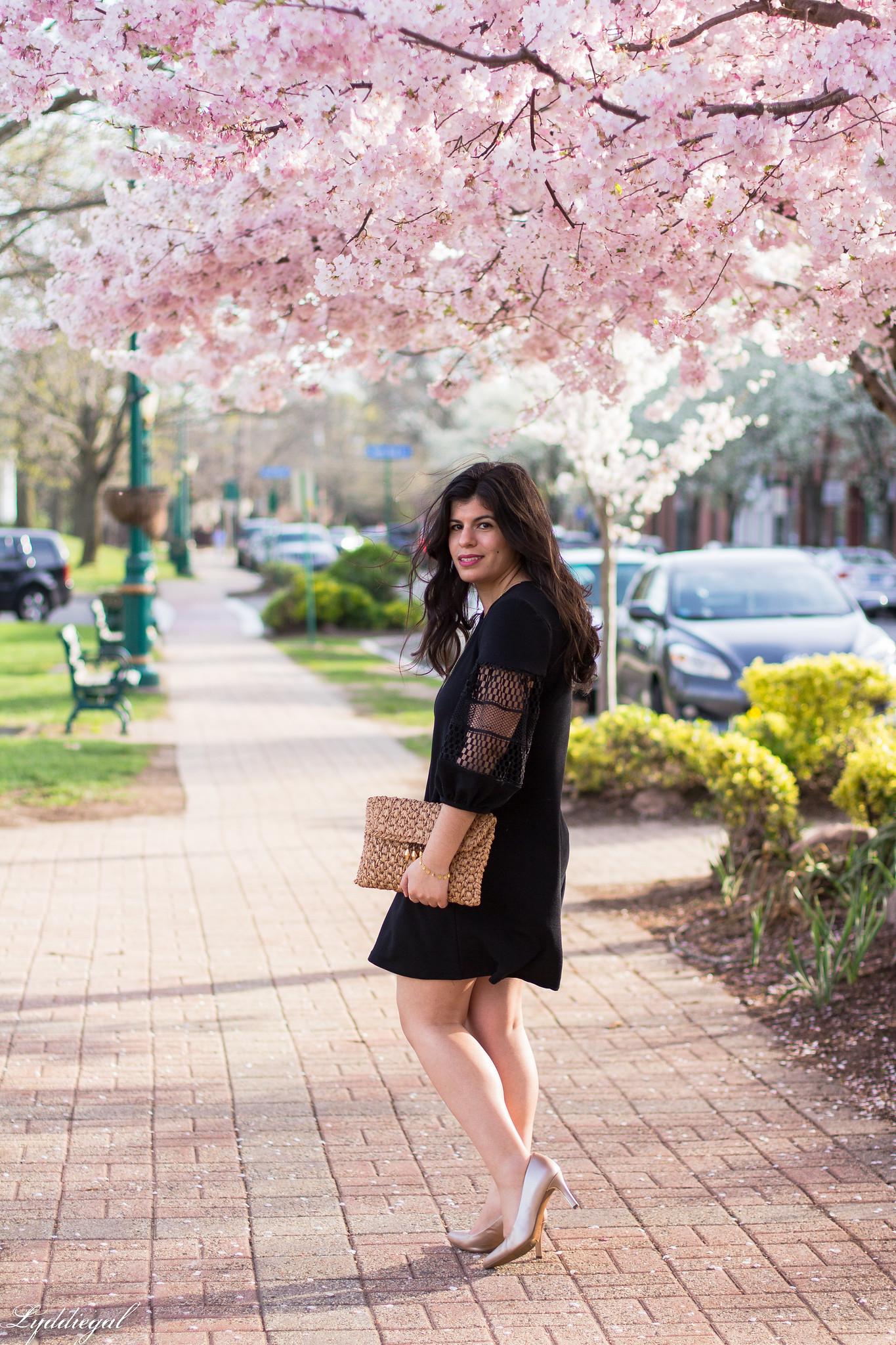 black dress, straw clutch, nude pumps-3.jpg