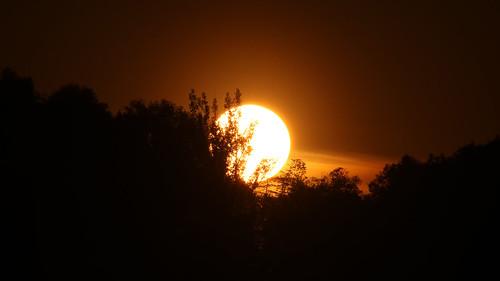 Sunset 11052018