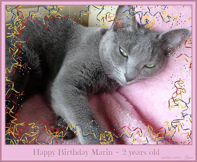 Happy Birthday Marin!