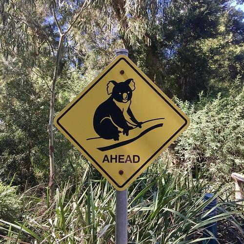Vakantie in Australië