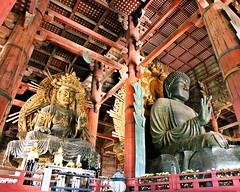 Nara Japan Todai Ji Temple