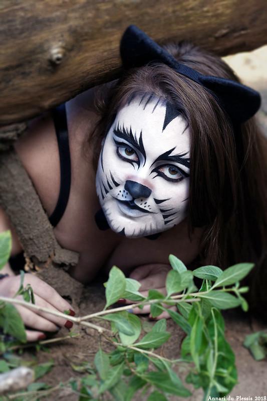 Kimi-Cat