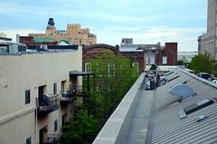 Barton Flats rooftop