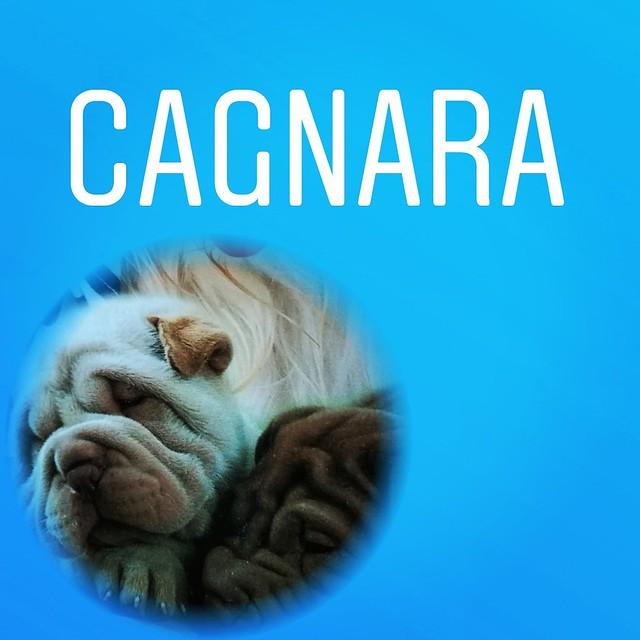 Cagnara - Commotion