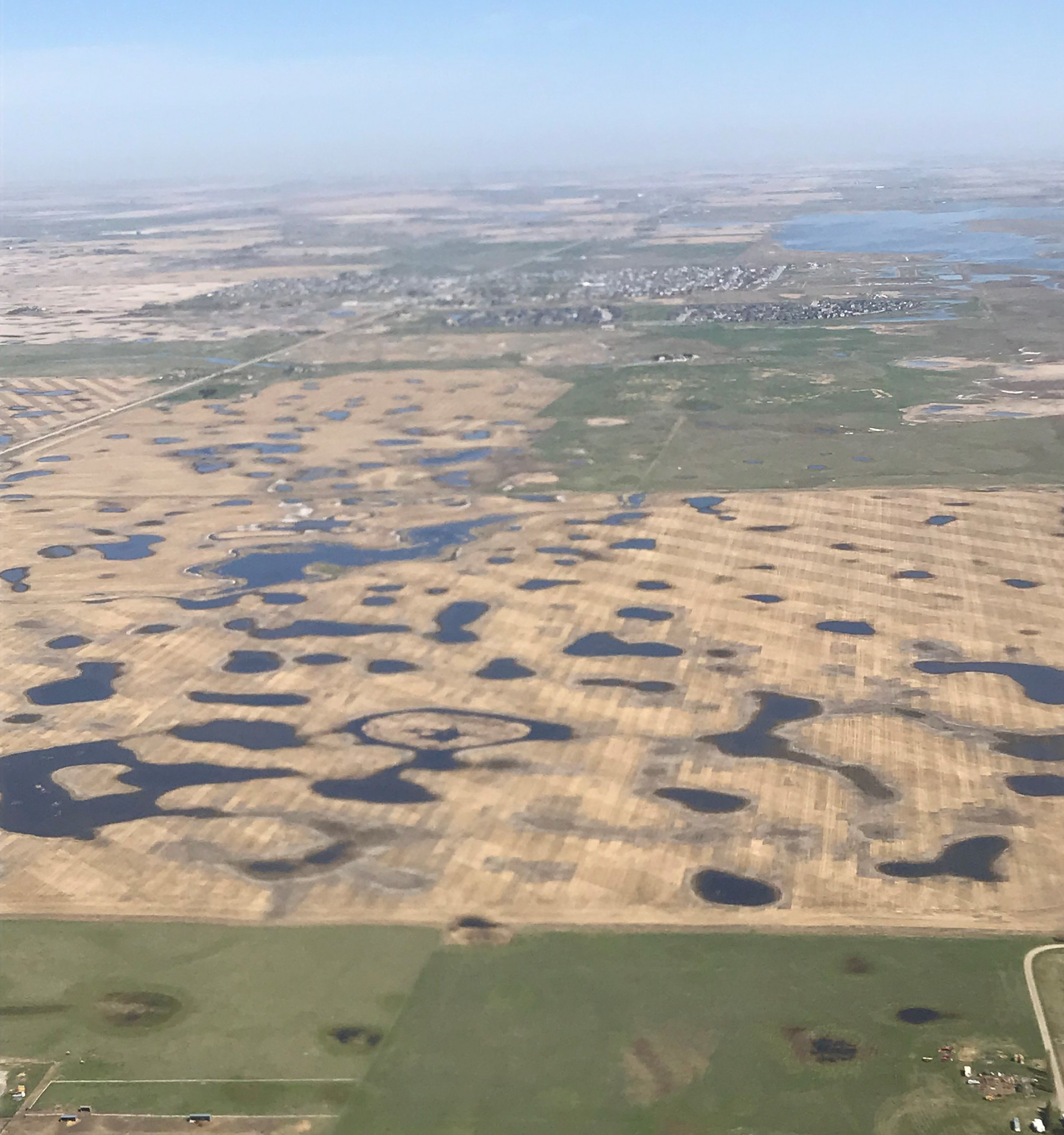 Most of the wetland basins 10 miles west of Calgary, Alberta, have water in them, with many of the basins full. (USF&WS photo by Jim Bredy)
