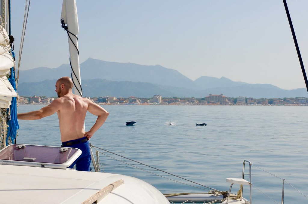 Whale and dolphin watching off the coast by Grand Hotel Principe di Piemonte