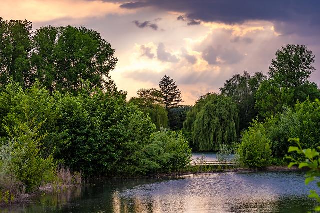 Lake sunset   SONY ⍺7III & Canon EF100~400mm ƒ/4.5~5.6L IS II USM on Metabones T Mark V