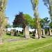 Irvine Old Parish Churchyard (160)