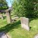 Irvine Old Parish Churchyard (225)