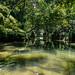 In the gardens of Hangzhou / В садах Ханчжоу