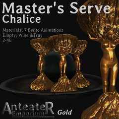 Masters_Serve_Chalice_AD_A
