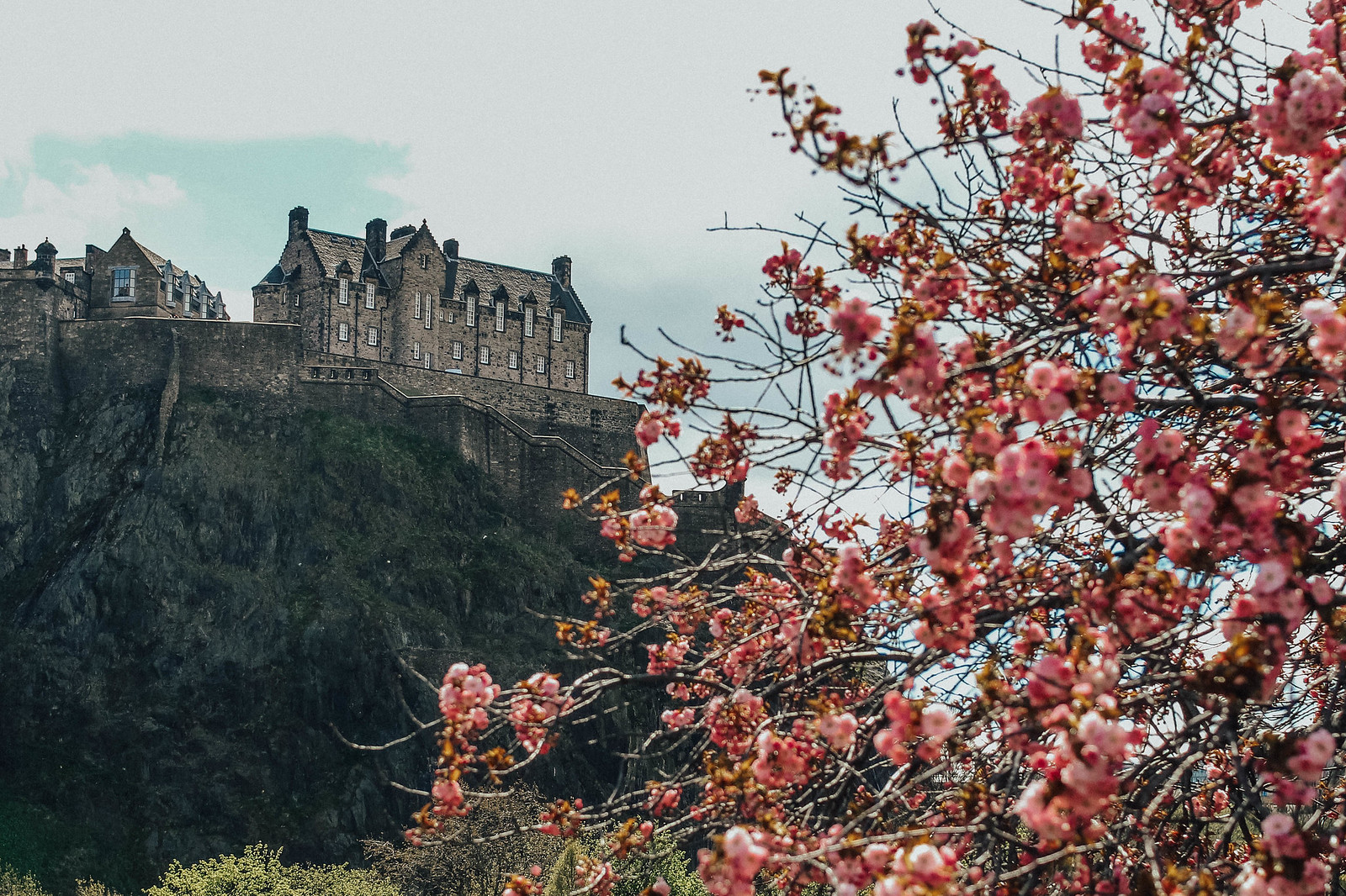 Blossom spring Edinburgh The Meadows Princes Street Gardens Edinburgh Castle