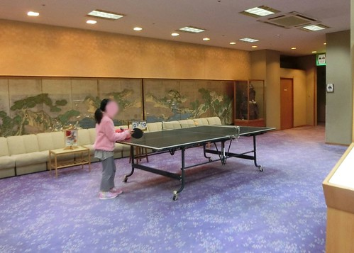 姫路城おすすめ和室旅館 夢乃井