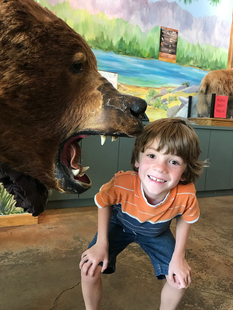 boy and a bear