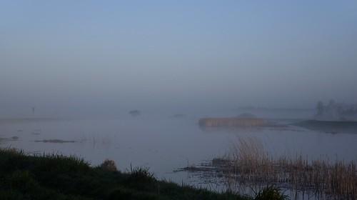 Morgens in Norderstapel an der Treene; Stapelholm (2)