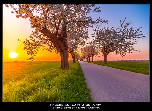 Spring Sunset - Upper Lusatia