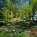Tumulus in Graffidge Wood