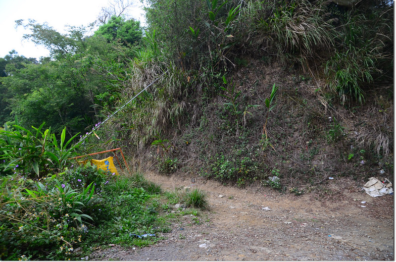 紅楠坑山(龜山、茅子埔山)登山步道 1