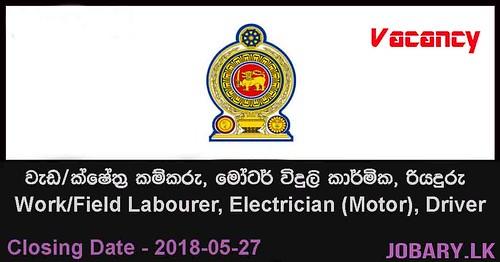 Work/Field Labourer, Electrician (Motor), Driver – Negombo Municipal Council