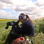 Jen Smart watching a godwit nest - Ian Dillon