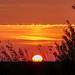 Tuesday evening sunset
