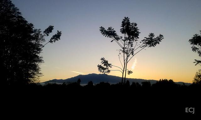 Otro amanecer/ Another sunshine