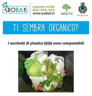 problemi organico (1)