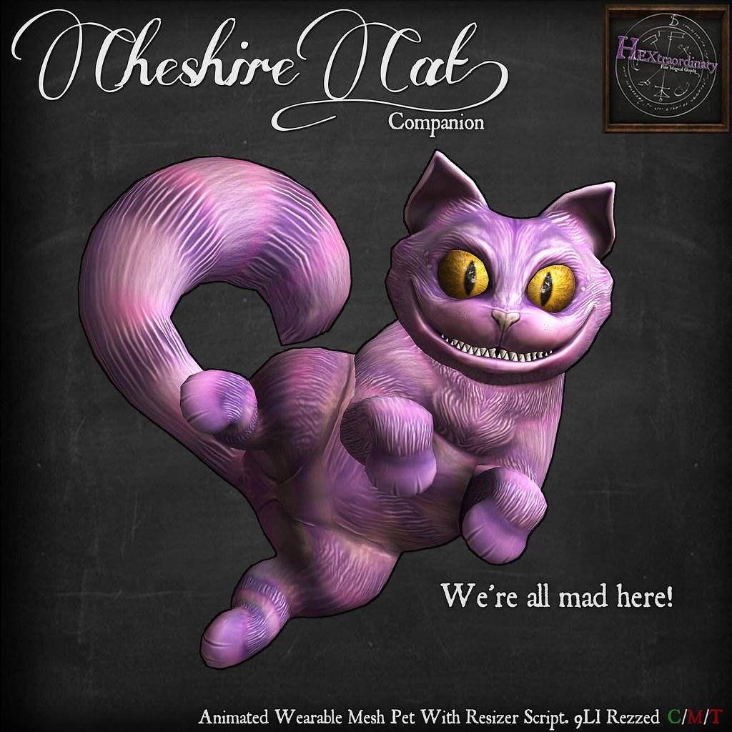 Cheshire Cat Companion - TeleportHub.com Live!