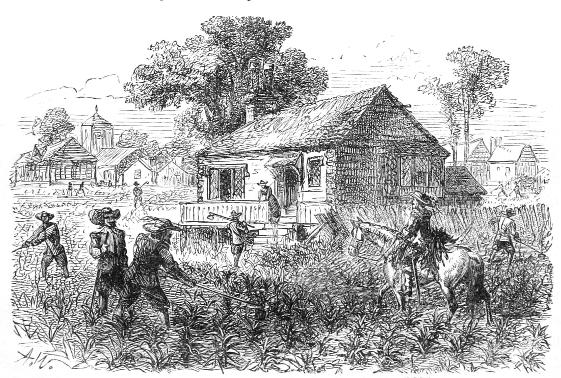 An 1878 depiction of tobacco cultivation at Jamestown, ca. 1615. From A School History of the United States, from the Discovery of America to the Year 1878 by David B. Scott (1878).