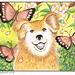 Smiling Dog with butterflies and Apple Blossoms