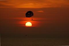 Sunset Parasail