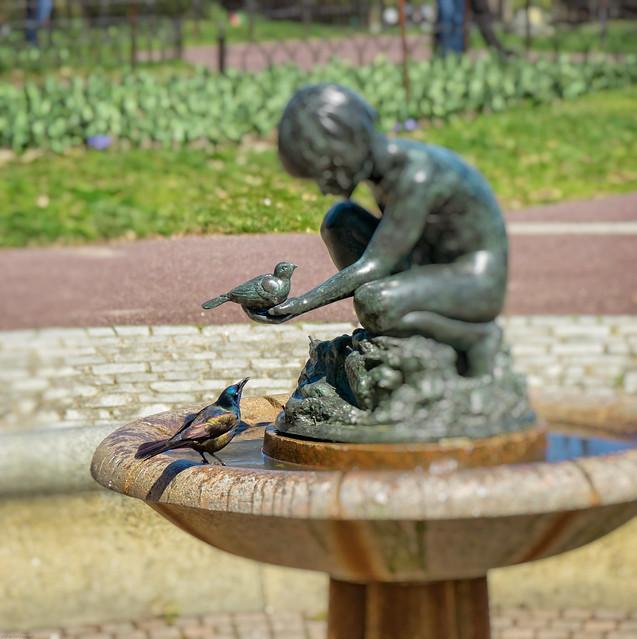 Bird in the hand, Sony ILCE-6000, Sony E 16-70mm F4 ZA OSS