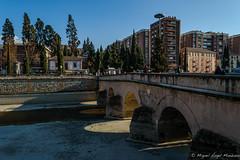 Puente sobre el R�o Genil