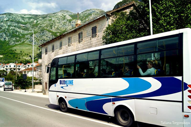 """Автобус """"Blue line"""" проезжает по Рисану"""