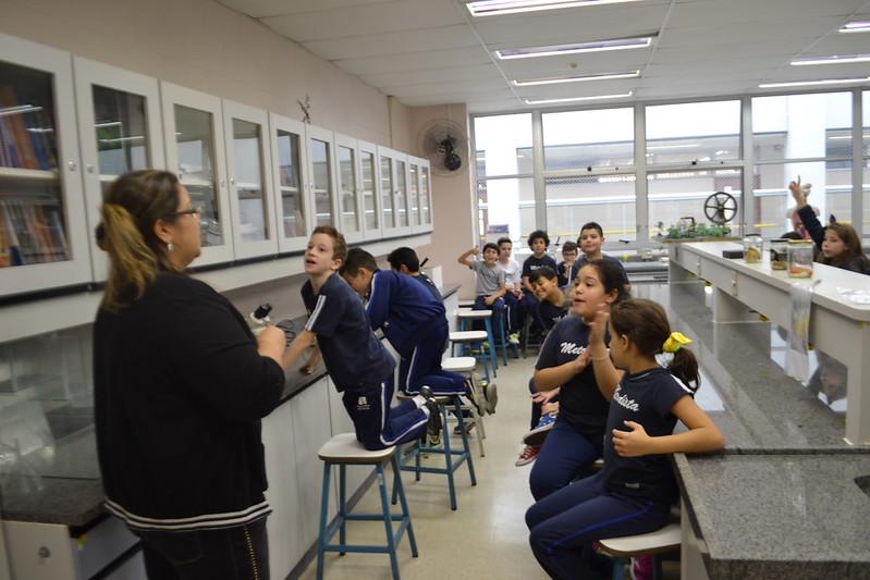 Atividade no laboratório - análise de fungos - 4º EFI - 2018