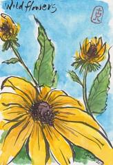 Etegami Wildflower postcard