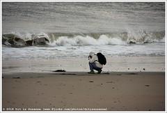 Fotograaf | Photographer | Фотограф