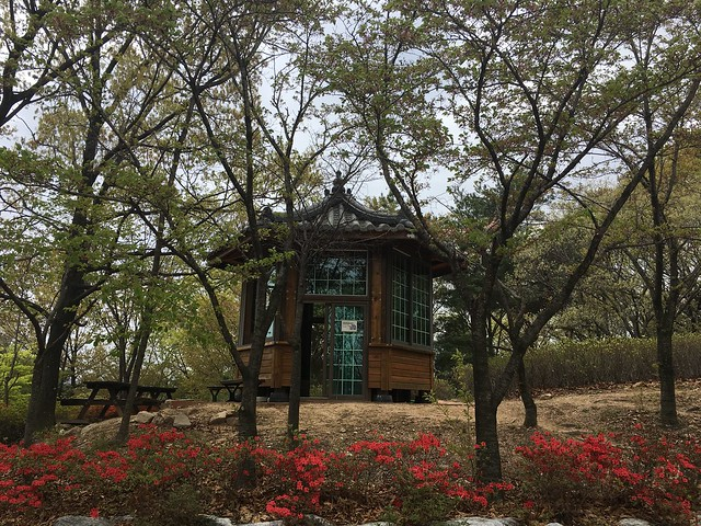 16남산 숲속도서관